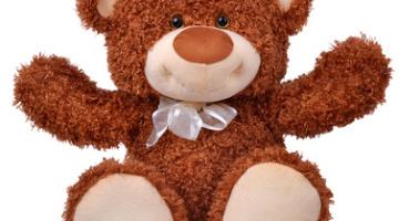 GKAS Teddy bear